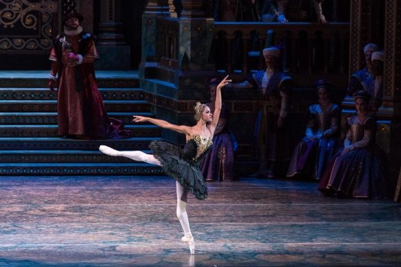 Misty Copeland as Odile. Photo: Darren Thomas, Photo Co