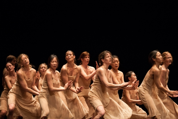 Pina Bausch's The Rite of Spring. Photo: Matt Grace